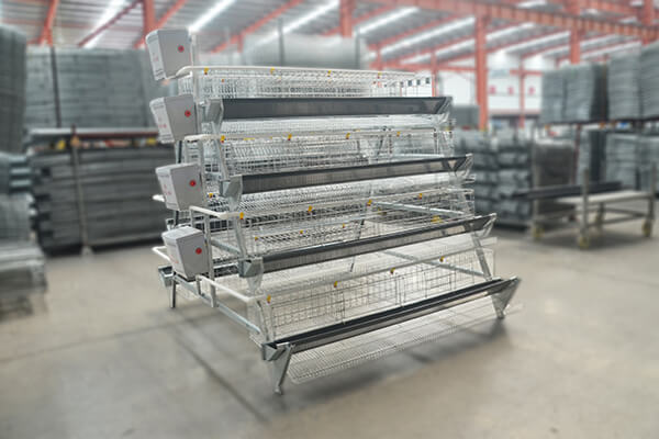 Manual Layer Chicken Cage