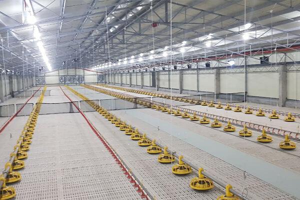 Broiler Floor System