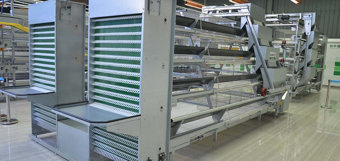 a-type-layer-cage-equipment
